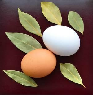 Die ideale Form - das Ei