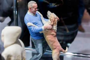 Doob 3D Figuren Ein Mann umarmt seinen Hund als lebensechte Figuren
