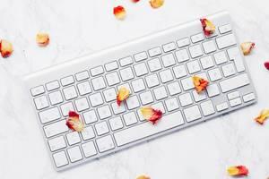 Draufsicht einer Tastatur mit Blütenblättern einer Rose auf Marmor