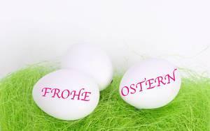 Drei Weiße Eier auf grünem Gras mit Wörtern Frohe Ostern vor weißem Hintergrund