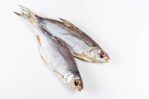Dried salted roach fish on a white background (Flip 2020)