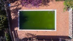 Drohnenfoto eines grünen, veralgten Schwimmbeckens