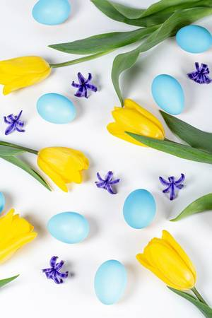 Easter-background-with-blue-eggs-yellow-tulips-and-hyacinth-flowers.jpg