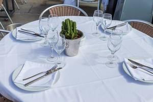 Edel gedeckter Tisch mit weißer Tischdecke, Servietten, Besteck, Gläsern und einem Kaktus in einem Restaurant in Barcelona, Spanien