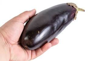 Eggplant in the hand above white background