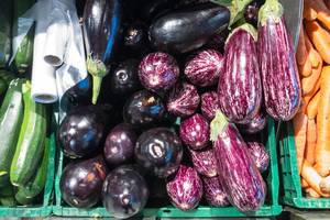 Eggplant varieties violet and graffiti in the supermarket
