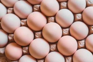 Eggs background.  Chicken eggs in carton.jpg