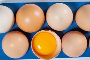Eigelb in einer Eierschale zwischen anderen Eiern in der Aufsicht