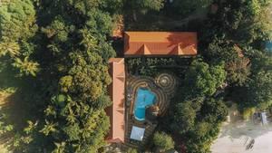 Ein Anwesen mit Swimmingpool von Bäumen umwachsen - aus der Vogelperspektive mit der Drohne aufgenommen