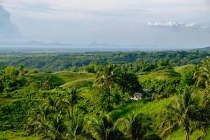 Ein Bauernhaus, versteckt in den grünen Feldern und Bergen von Silay