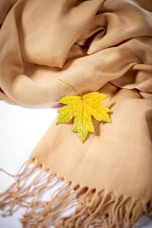 Ein gelbes Ahornblatt auf einem beigen Schal