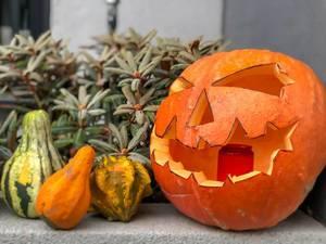 Ein Halloweenkürbis mit gruseligem Gesicht mit kleineren Kürbissen auf einem Vorsprung