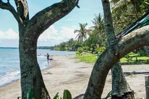 Ein Mann spaziert mit seinem Hund am Strand von Hinigaran (Flip 2019)