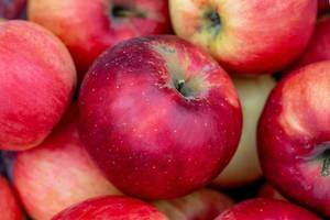 Ein schöner roter Apfel zwischen anderen Äpfeln in der Nahaufnahme