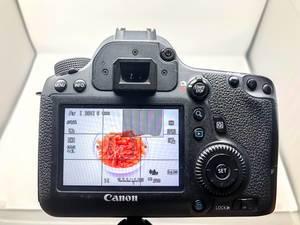 Eine Aufnahme ist auf dem Display einer Canon zu sehen - Stock Photography