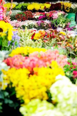 Eine große Auswahl an bunten Blumensträußen