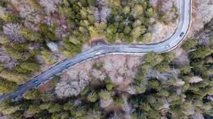 Eine ländliche Waldstraße in den Südvogesen aus der Vogelperspektive