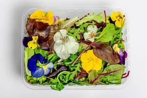 Eine Mischung aus verschiedenen Salatblättern und essbaren Blüten in einer Plastikbox