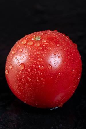 Eine reife Tomate mit Wassertropfen