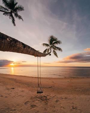Eine Schaukel an einer Palme an einem exotischen Strand bei Sonnenuntergang