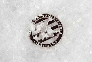 Eingefrorene Litecoin Münze im Krypto-Winter