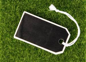 Empty wooden tag on grass background
