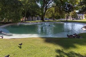 Ententeich in einem Park in Lissabon