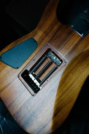 Entfernter Deckel bei elektrischer Gitarre macht Federn im Inneren sichtbar