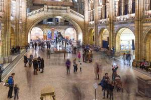 Entry Hall of Natural History Museum London