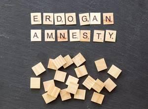 Erdogan lässt Amnesty-Chef in der Türkei festnehmen