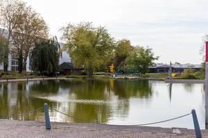 Essener Grugapark im Herbst idyllische Wassersicht