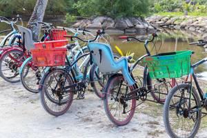 Fahrräder mit Kindersitz und Körben auf Gepäckträger vor einem Teich auf La Digue, Seychellen