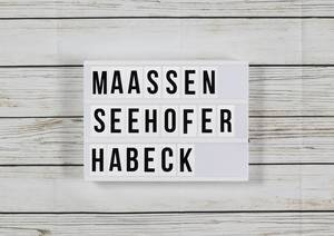 Fall Maaßen: Seehofer schützt Polizei und Geheimdienste - Habeck mit Attacke in rbb-Sendung | Politik