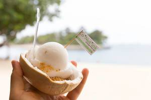 Famous Coconut Ice Cream