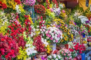 Farbenfroher Straßenstand eines Blumenverkäufers in Ho Chi Minh City im Süden Vietnams