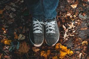 Feet in shoes on fallen dry leaves (Flip 2019)