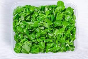 Feldsalat in einer Plastikschale auf einem weißen Holztisch, Aufnahme von oben