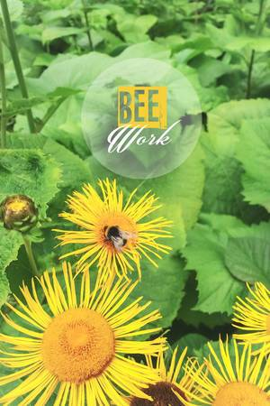 Felißige Biene auf der Blume