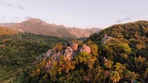 Felsen in mit Wald bewachsener Berglandschaft - Luftaufnahme