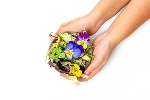 Female hands hold a glass bowl with lettuce leaves, arugula and flowers on a white background (Flip 2019)