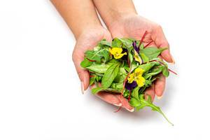 Female hands with lettuce, arugula and flowers (Flip 2019)