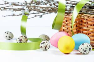 Festive background for Easter with quail and chicken eggs, spring branches and a green ribbon (Flip 2020)