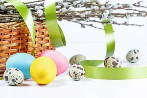 Festive background for Easter with quail and chicken eggs, spring branches and a green ribbon