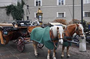 Fiaker in Salzburg
