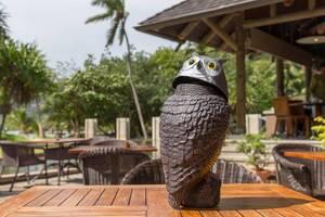 Figur einer Eule mit verdrehtem Kopf steht auf einem Holztisch einer Hotelanlage auf Mahé, Seychellen