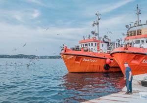 Fischerboote in der Hafenstadt Rovinj, Kroatien