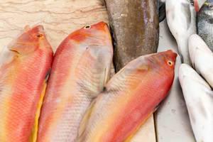 Fischmarkt auf dem Mercado dos Lavradores in Funchal