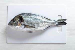 Fish dorado on white background (Flip 2019)
