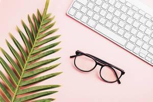 Flat lay mit Brille, Tastatur und Pflanze im rosa Hintergrund