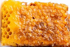 Flatlay von einer Bienenwabe voll von Honig